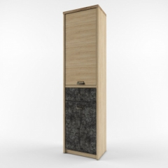 Шкаф 2D1S/D3 (Дизель)
